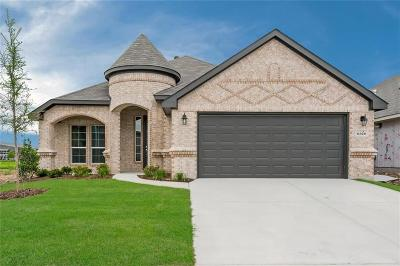 Fort Worth Single Family Home For Sale: 6328 Red Cliff Drive