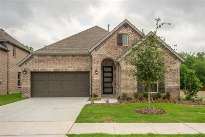 McKinney Single Family Home For Sale: 5705 Riverside Lane