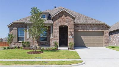 Forney Single Family Home For Sale: 1617 Pegasus Drive