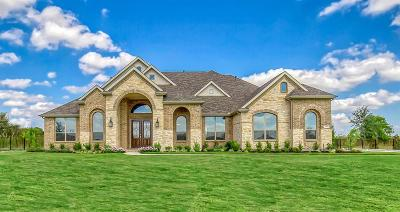 Collin County Single Family Home For Sale: 6401 Curtis Drive