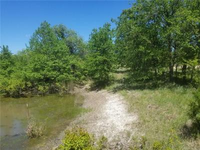 Parker County Residential Lots & Land For Sale: 189 Sandpiper Drive
