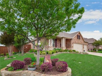 Collin County Single Family Home For Sale: 2901 Kirkwood Drive