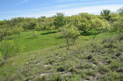Baylor County Farm & Ranch For Sale: Fm 1790
