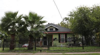 Dallas Single Family Home For Sale: 810 E 12 Th Street