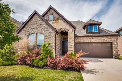 Denton County Single Family Home For Sale: 6420 Prairie Brush Trail