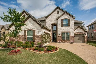 Frisco Single Family Home For Sale: 9560 Corinth Lane