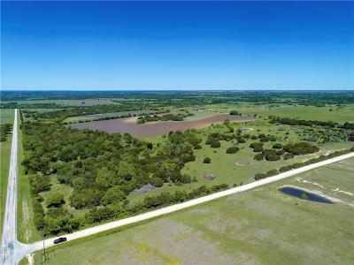 Hamilton County Farm & Ranch For Sale: 6700 County Road 410