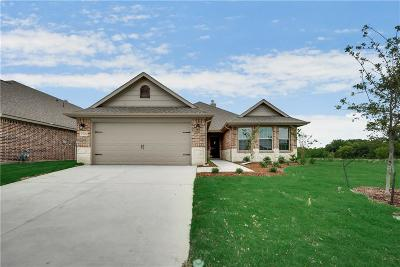 Fort Worth Single Family Home For Sale: 7520 Bellingham Road