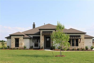 Denton County Single Family Home For Sale: 1113 Denton Creek Road