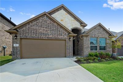 Denton Single Family Home For Sale: 3605 Helm Lane