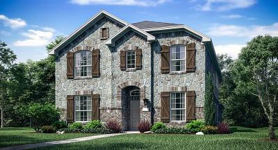 Denton County Single Family Home For Sale: 2408 Evening Stone Drive