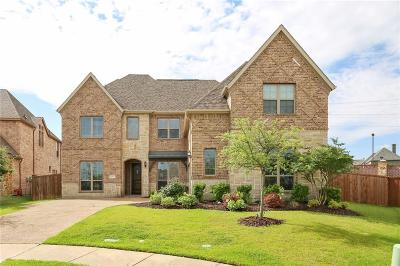 Allen Single Family Home For Sale: 1515 Chadwick Drive