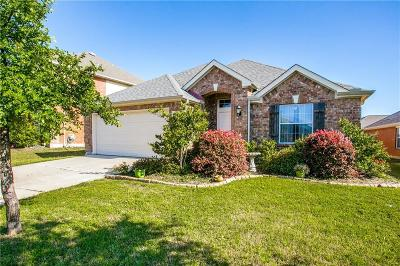 Little Elm Single Family Home For Sale: 2656 Waterdance Drive