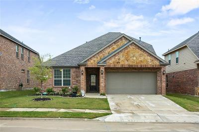 Little Elm Single Family Home For Sale: 804 Lake Pleasant Road