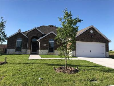 Collin County Single Family Home For Sale: 809 Long Prairie Drive