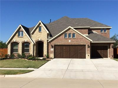Grand Prairie Single Family Home For Sale: 7407 Brisa Court