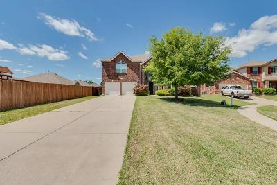 Little Elm Single Family Home For Sale: 461 Willowlake Drive