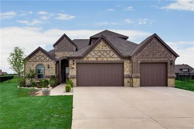 Gunter Single Family Home For Sale: 1173 Stonebridge Pass