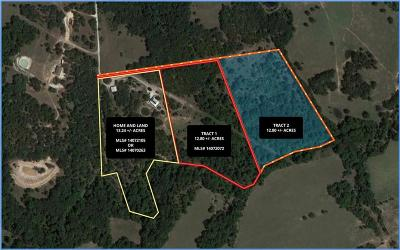 Springtown Residential Lots & Land For Sale: 374 Pr 3633