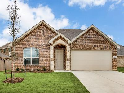 Fort Worth Single Family Home For Sale: 8424 Sweet Flag Lane