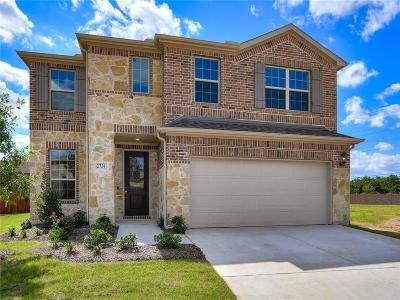 Irving Single Family Home For Sale: 2731 Amistad Drive