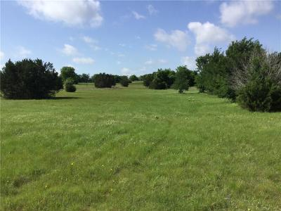 Aledo Residential Lots & Land For Sale: 116 S Canyon Lake Drive
