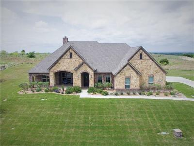 Parker County Single Family Home For Sale: 164 Condor View