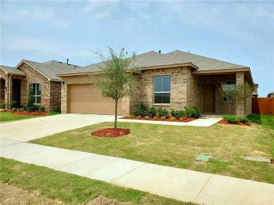 Single Family Home For Sale: 1033 Spanish Needle Trail