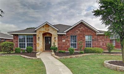 Denton County Single Family Home For Sale: 3960 Palace Place