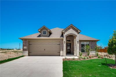 Fort Worth Single Family Home For Sale: 7228 Tesoro Trail