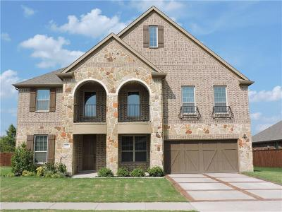 Frisco Single Family Home For Sale: 5070 Kerstyn Drive