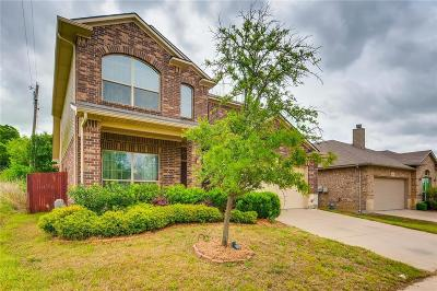 Denton Single Family Home For Sale: 3001 Pecan Tree Drive