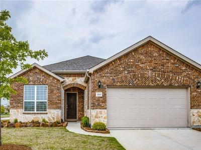 Frisco Single Family Home For Sale: 3080 Lighthouse Drive