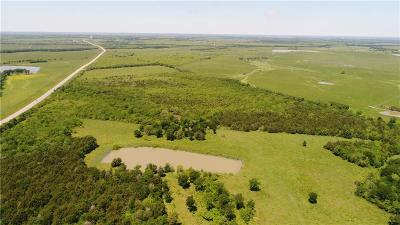 Limestone County Farm & Ranch For Sale: 131 Fm 638