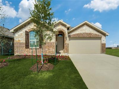 Fort Worth Single Family Home For Sale: 8925 Dameron Drive