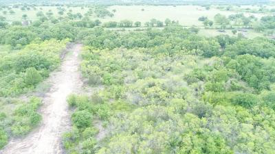 Stephenville Farm & Ranch For Sale: Tbd Fm 3025 #1