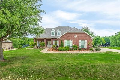Fort Worth Single Family Home For Sale: 12600 Indian Creek Drive