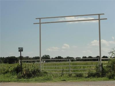 Palo Pinto Farm & Ranch For Sale: Trb1 Brown Road