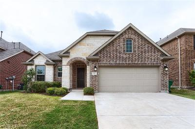 Little Elm Single Family Home For Sale: 713 Sundrop Drive