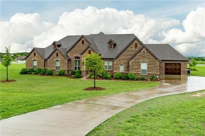 Parker County Single Family Home For Sale: 113 Legacy Downs Drive