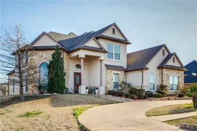 Cedar Hill Single Family Home For Sale: 2449 Sweeping Meadows Lane