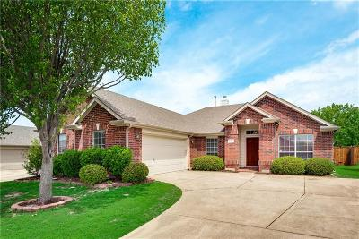 Allen Single Family Home For Sale: 1521 Edgewater Drive