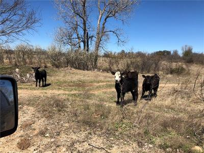 Eastland County Farm & Ranch For Sale: Fm 569 Hwy 36 Road