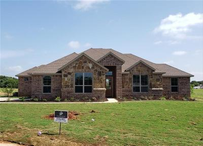 Parker County Single Family Home For Sale: 112 Maudy Lane