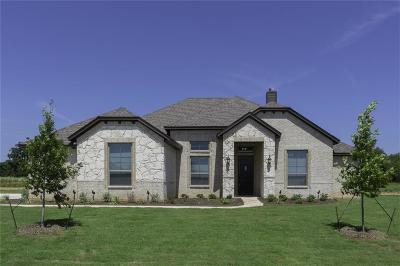 Parker County Single Family Home For Sale: 116 Maudy Lane