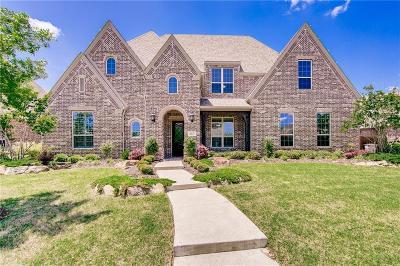 Allen Single Family Home For Sale: 2237 Waterrock Drive