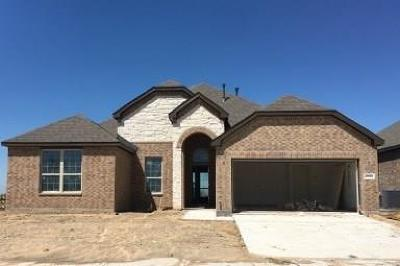 Collin County Single Family Home For Sale: 2900 Open Range Drive