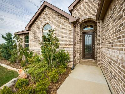 Denton TX Single Family Home For Sale: $294,000