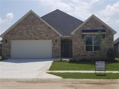 Wise County Single Family Home For Sale: 2925 Josie Drive