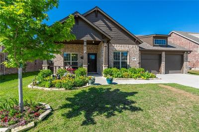 Prosper Single Family Home For Sale: 281 Dragonfly Drive